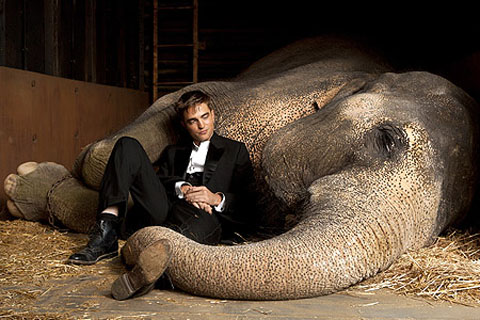 Robert Pattinson Water For Elephants