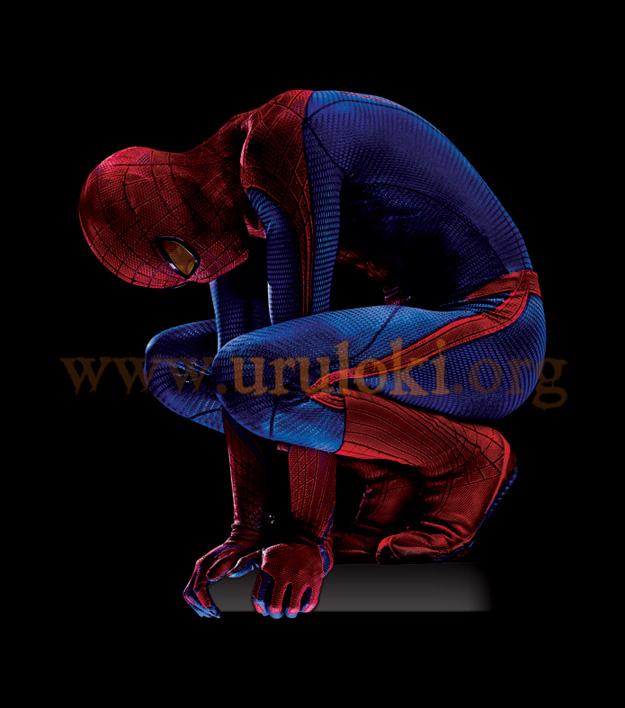 Traje de Spiderman Hombre Araña