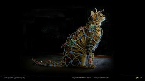 Faraday Cat The Darkest Hour