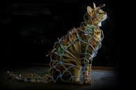 The Darkest Hour Faraday Cat