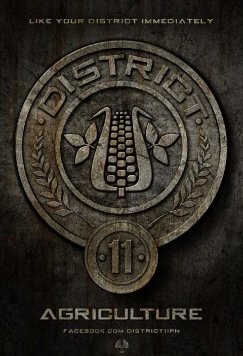 Distrito 11