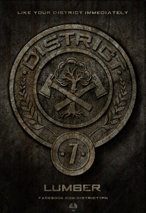 Distrito 7 - Madera