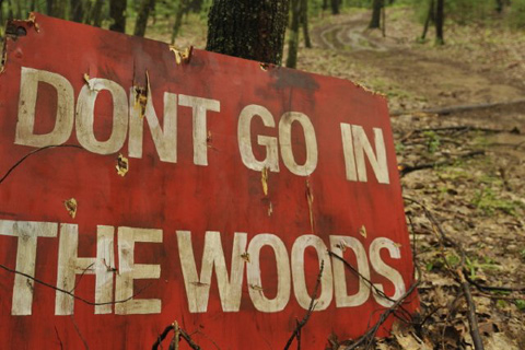 dont go into the woods