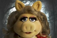 bella swine muppets miss piggy