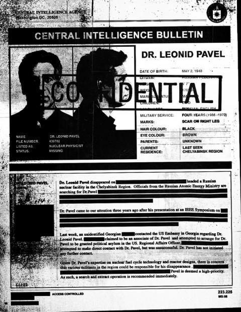 leonid pavel