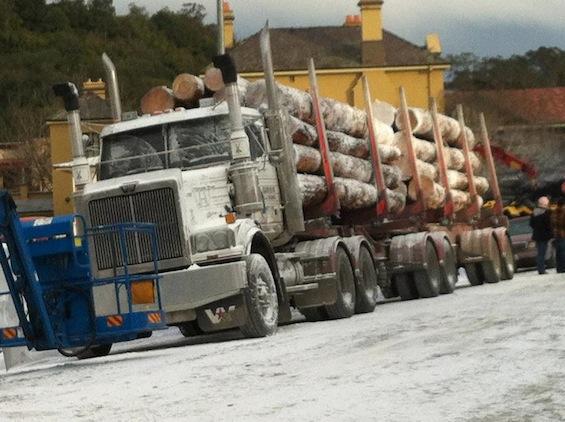 wolverine set camion troncos