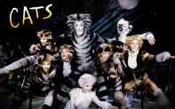 cats musical furries