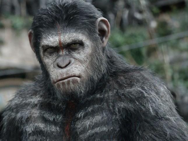 planeta de los simios confrontacion cesar