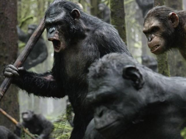 planeta de los simios confrontacion simios