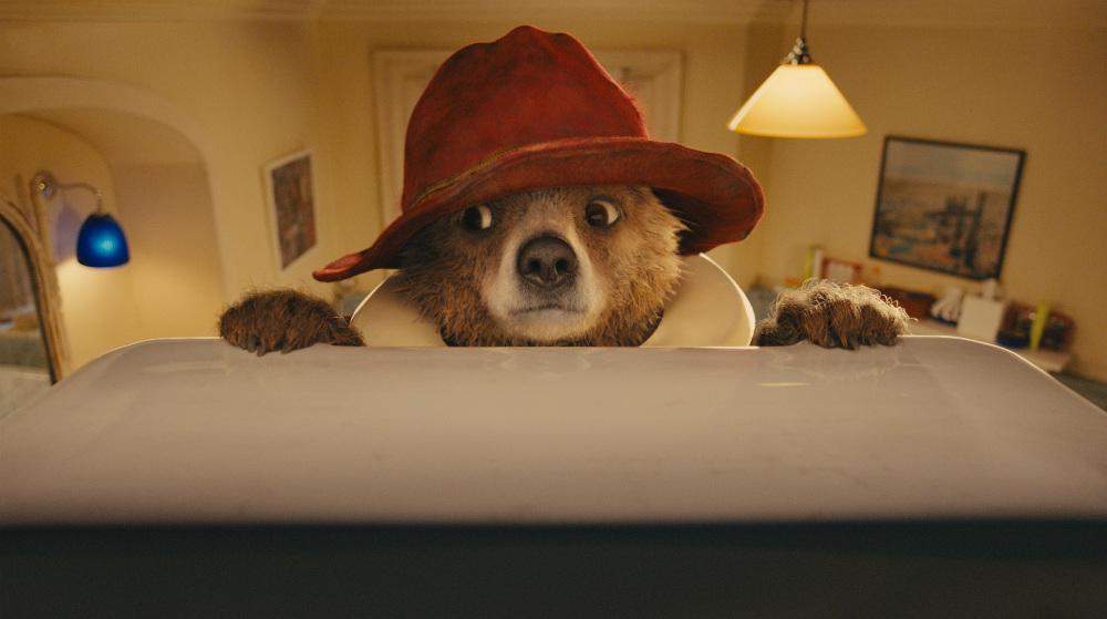 oso adorable paddington