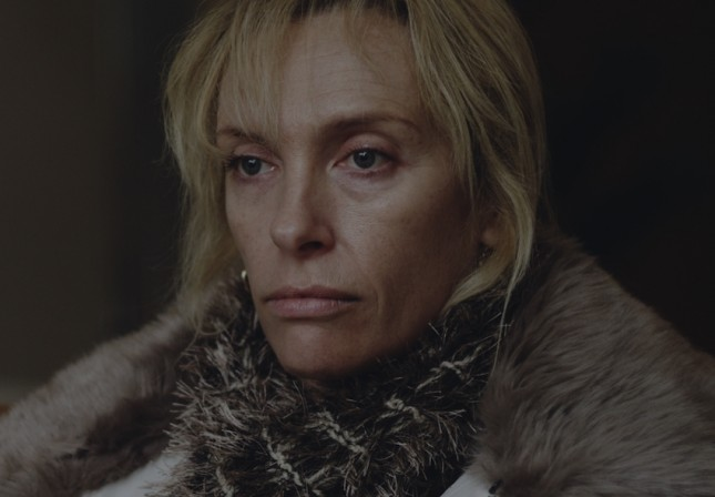 toni collete glassland
