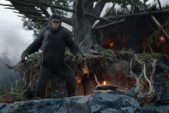 cesar planeta de los simios confrontacion