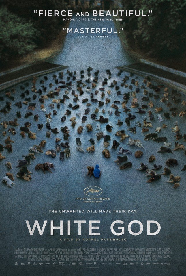 poster white god hagen y yo