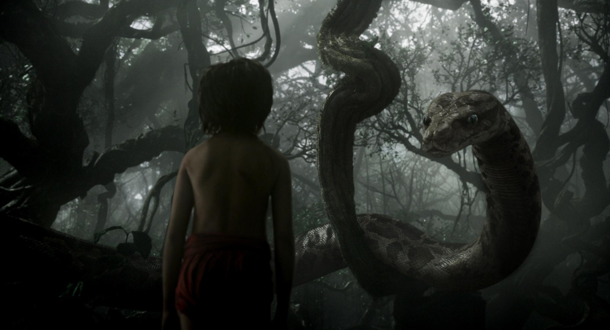 libro de la selva mowgli kaa