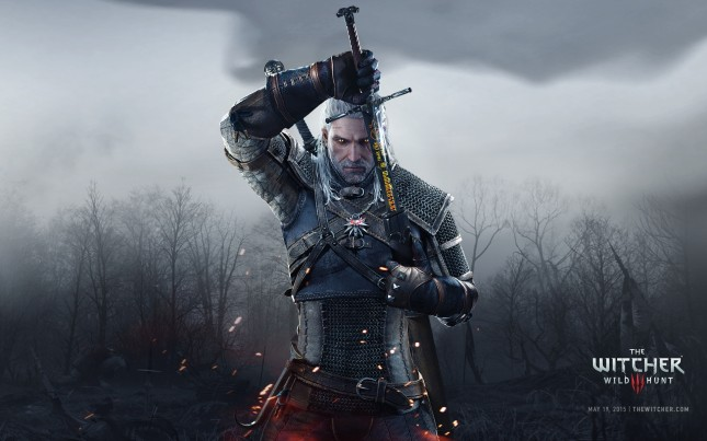 wild hunt the witcher