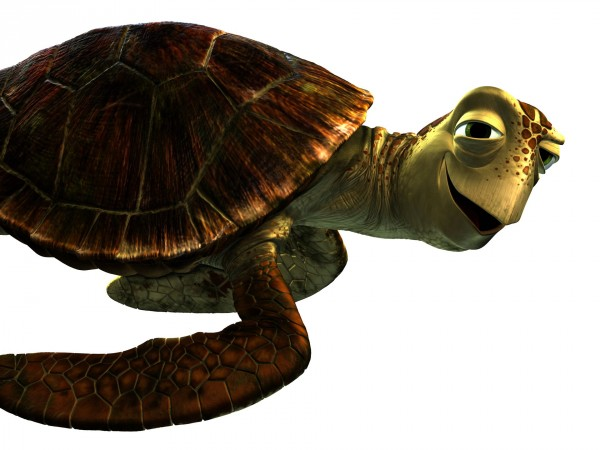 finding-dory-crush-andrew-stanton-sea-turtle-600x450