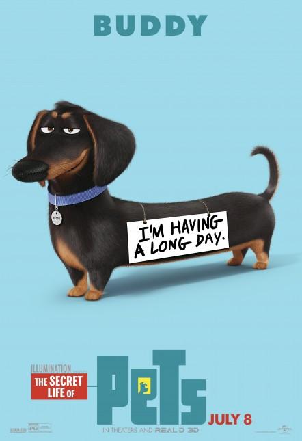 buddy la vida secreta de tus mascotas