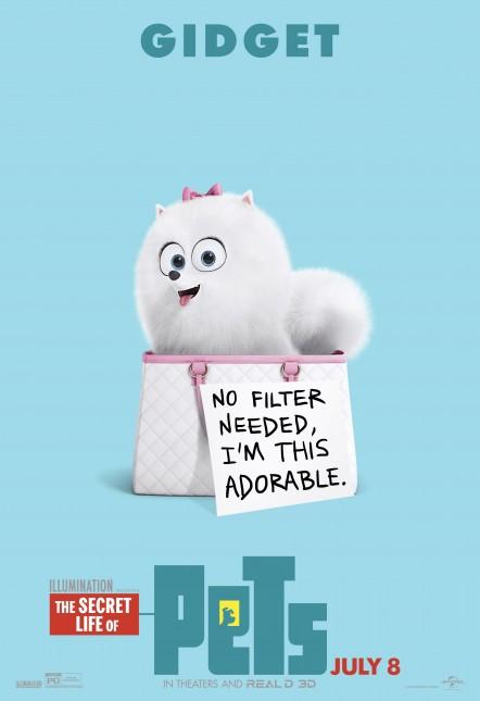 gidget la vida secreta de tus mascotas