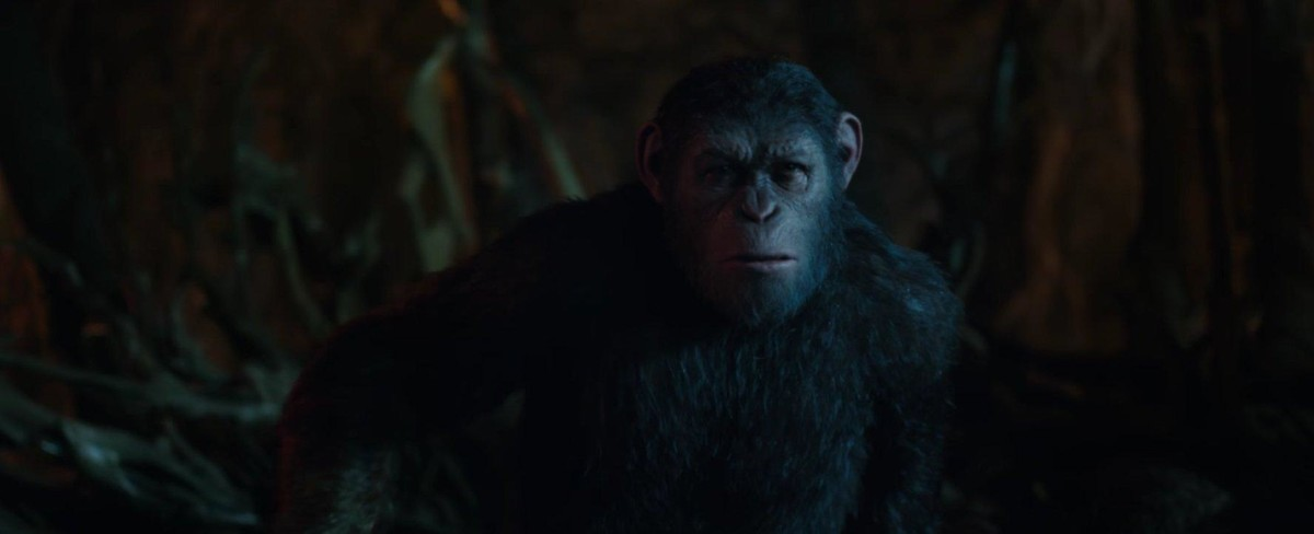 planeta de los simios la guerra