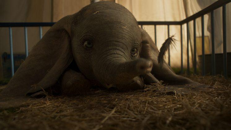 01 dumbo dtlr2 4k r709f still 181105.087357 ONLINE 746x420 - Trailer subtitulado de Dumbo de Tim Burton